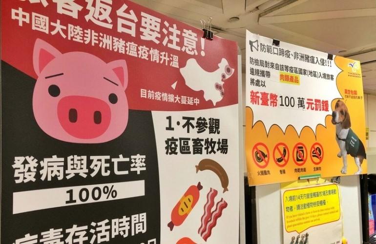 Dịch lợn châu Phi nghiêm trọng thế nào?