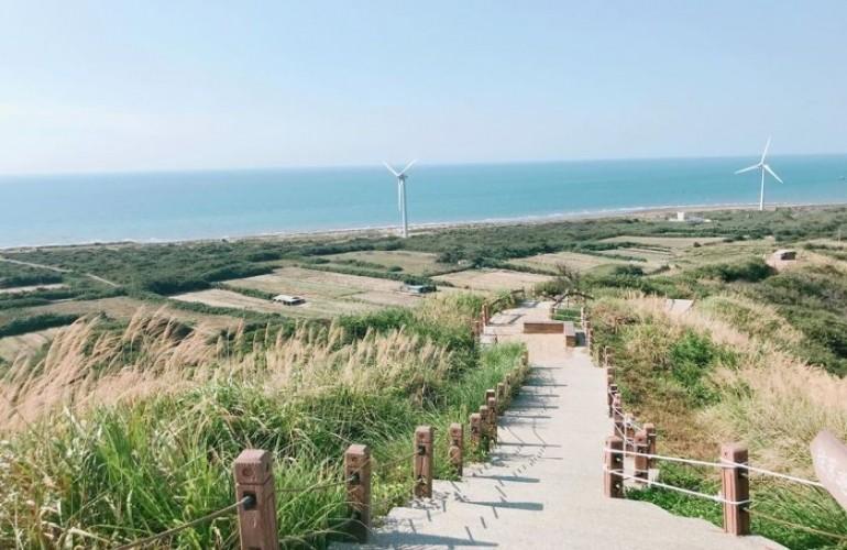 Đài Loan - Mùa cỏ lau