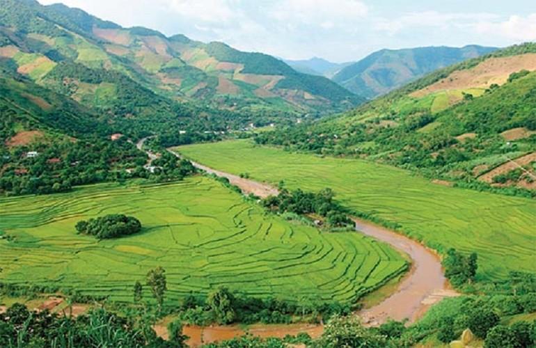 馬江的苔蘚  - 越南西北最深情的料理
