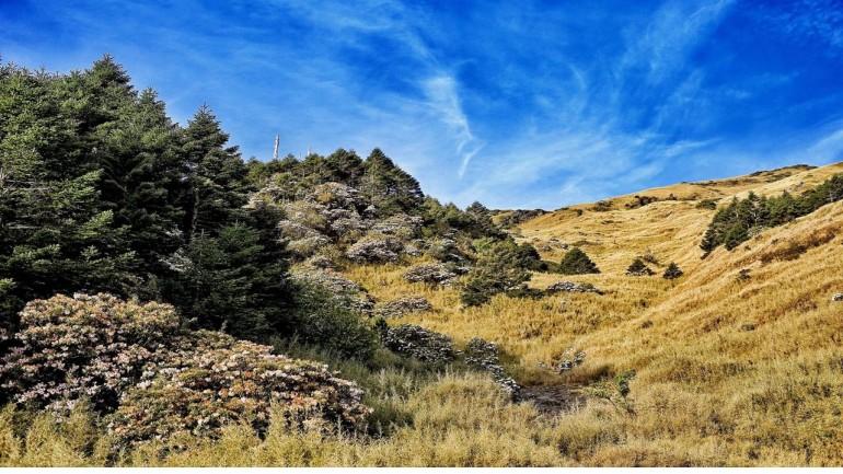 Núi Hợp Hoan – Hehuan Shan – Ngày ấy thôi đừng thương nhau