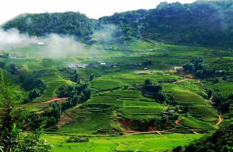 西北山林得天獨厚的禮物——越南山羅省