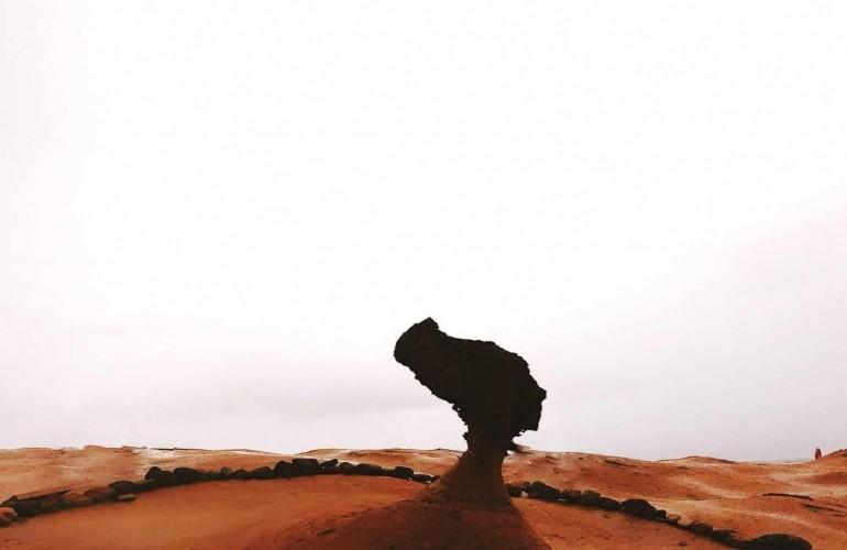Dã Liễu - kiệt tác từ bàn tay sắp đặt của tự nhiên